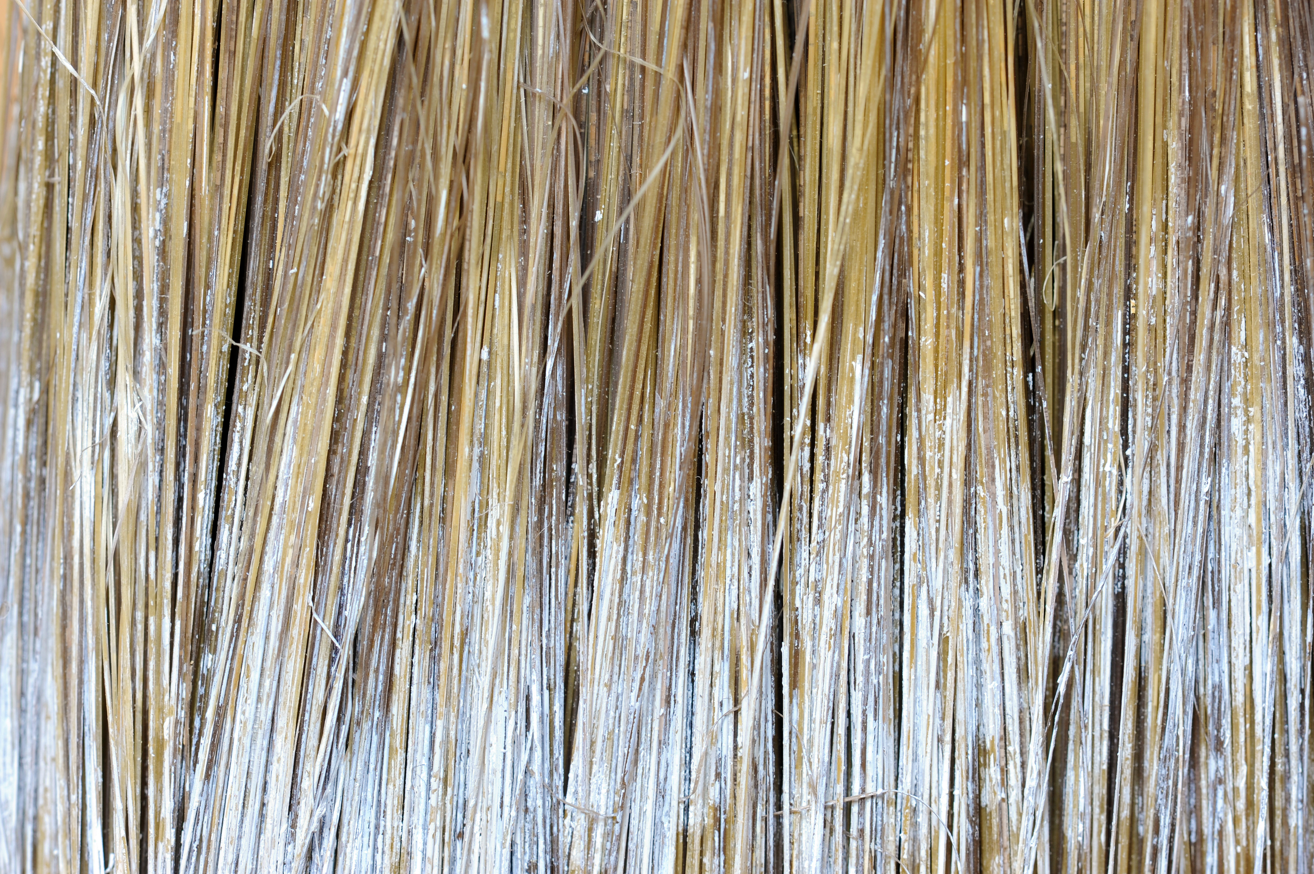 Close Up Of Paintbrush Bristles Background Labs