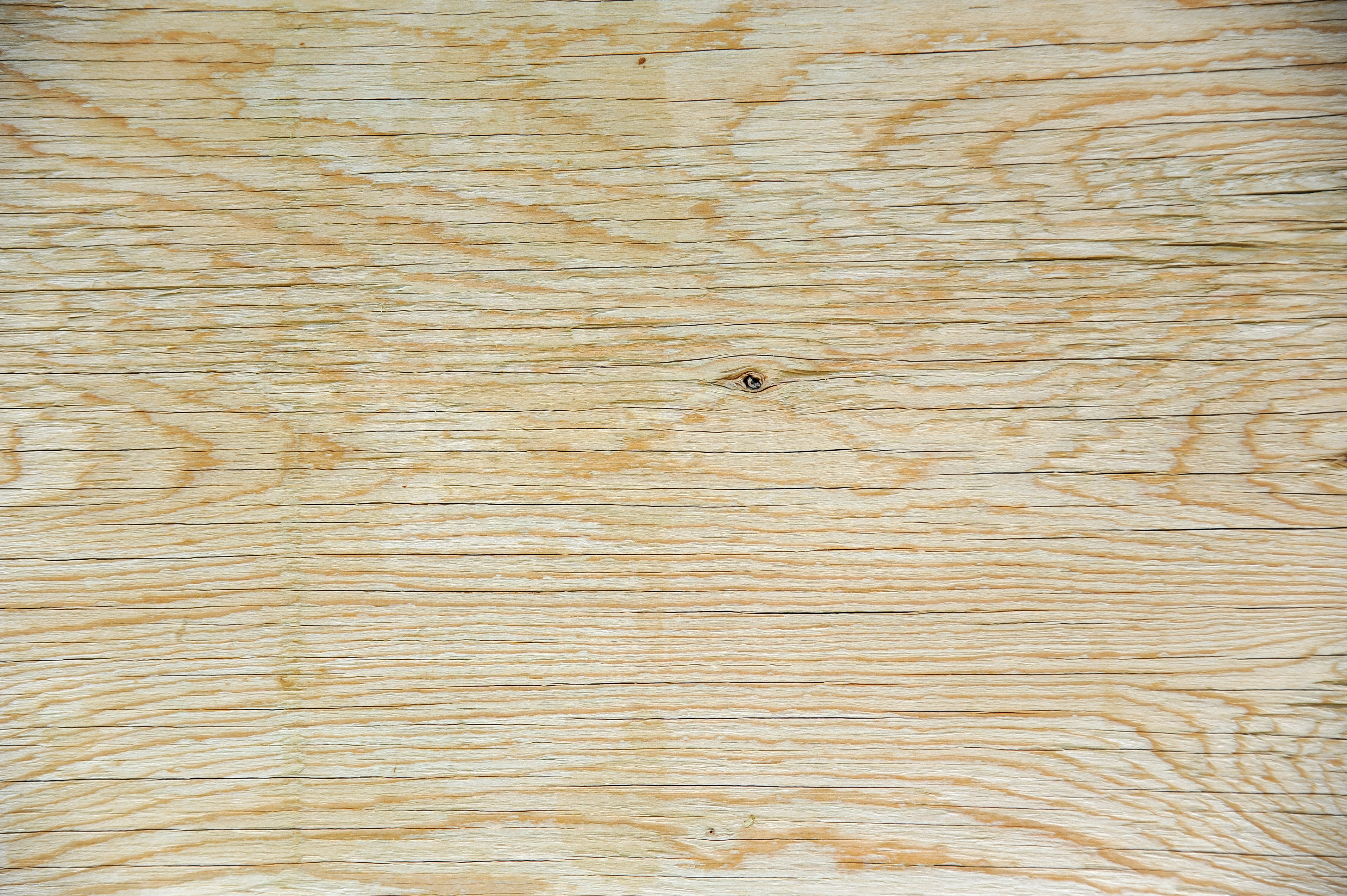 Old Plywood Sheet Texture Background Labs