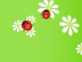 Cute Ladybug Pattern
