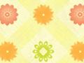 Plaid Floral Pattern