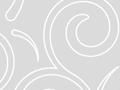 Swirls Seamless Pattern