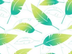 Feather iPad Background